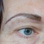 Brows in the hairstroke style
